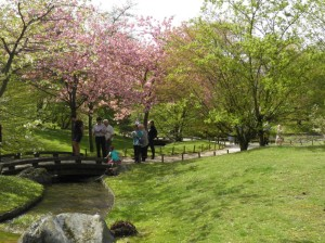 Japanse tuin, Hasselt
