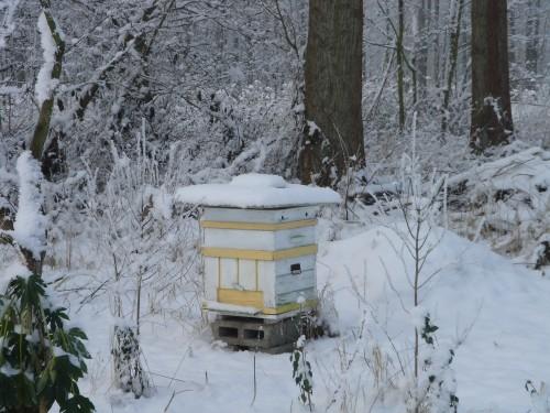 Kempische kast in de sneeuw