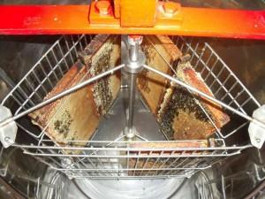 slinger met honingramen