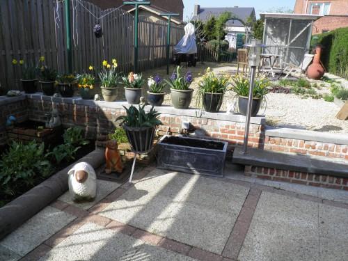 terras, voorjaarsbollen